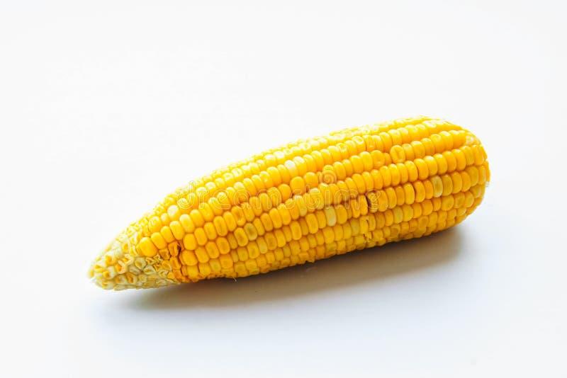 Mais auf Isolat lizenzfreie stockfotos