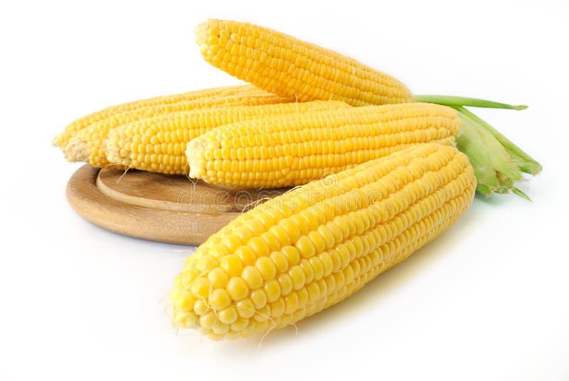 Mais auf Pfeiler stockbild