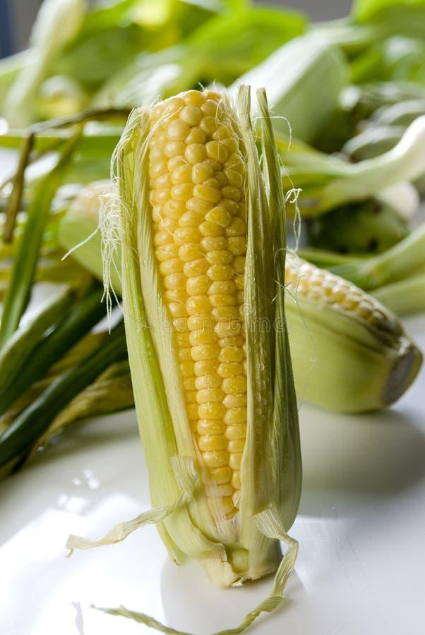 Mais auf Pfeiler stockbilder