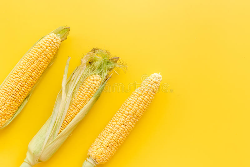 Mais auf Pfeilern auf gelbem copyspace Draufsicht des Hintergrundes lizenzfreies stockbild