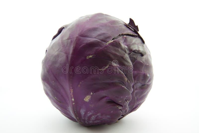 Download Mais Couve Recentemente Vermelha Foto de Stock - Imagem de garnish, vegetais: 29839948