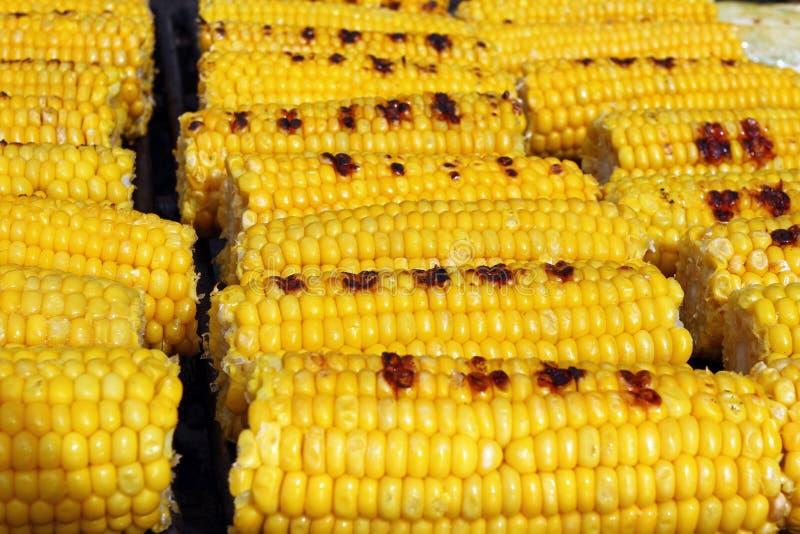 Mais Frische organische Maiskolben, die auf einem Grill grillen Gegrillte Körner Gelbe gebackene Maiskolben Gegrillte Maishinterg stockfotografie