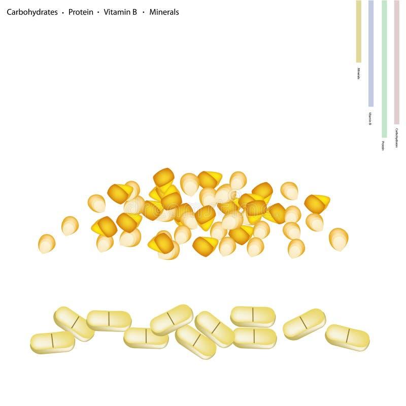 Mais-Samen mit Vitamin B und Mineralien lizenzfreie abbildung