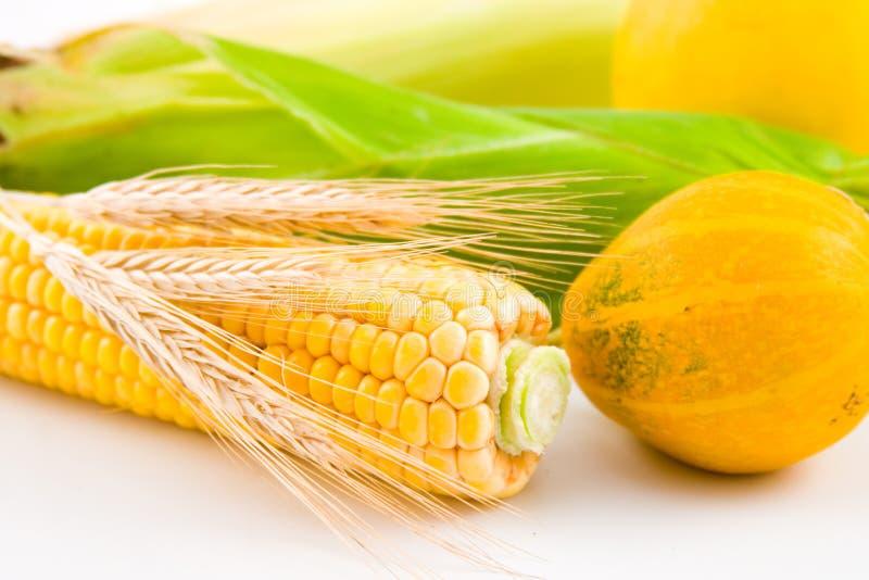 Mais, Weizen und Kürbis stockfotografie