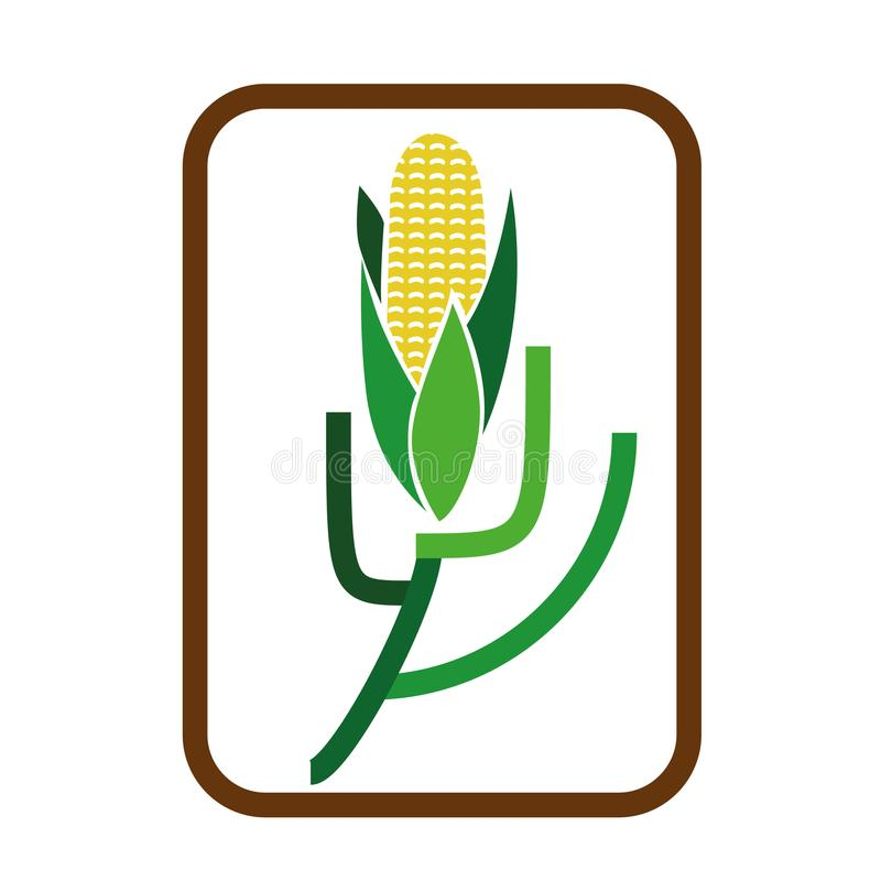 Maiskornlogo - Gemüsesammlung stock abbildung