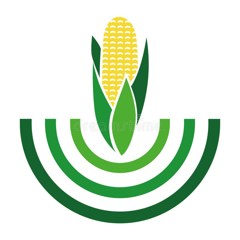 Maiskornlogo - Gemüsesammlung vektor abbildung