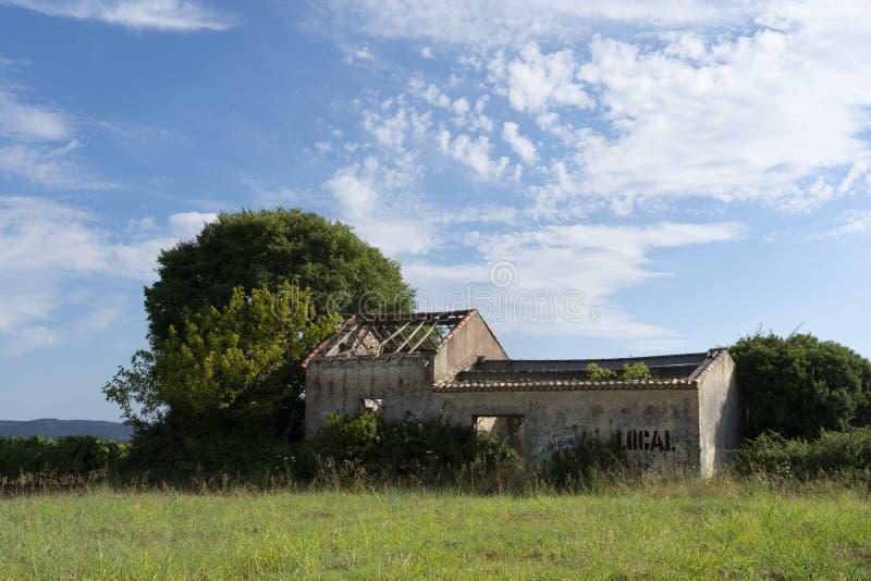 Maison abandonnée au milieu du vignoble image stock