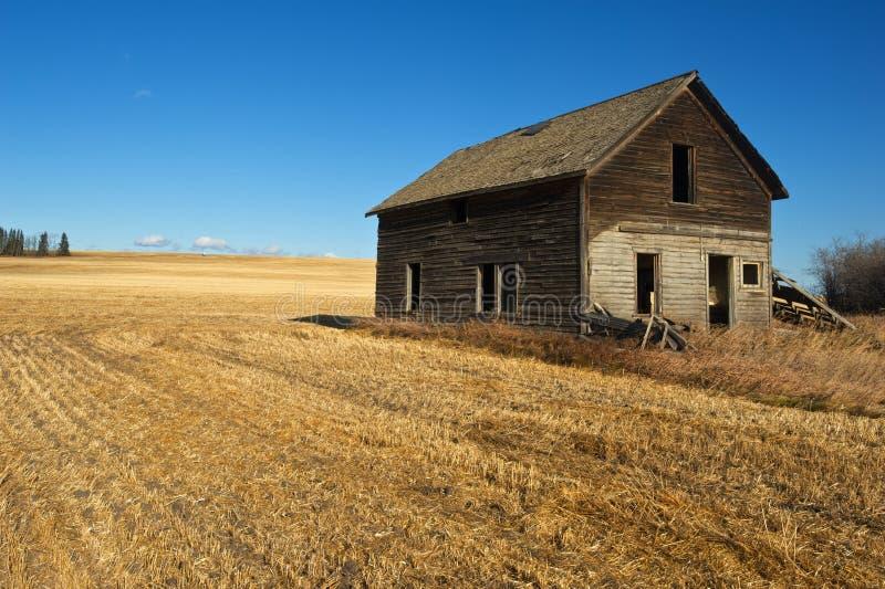 Maison abandonnée dans le domaine de blé moissonné photos stock