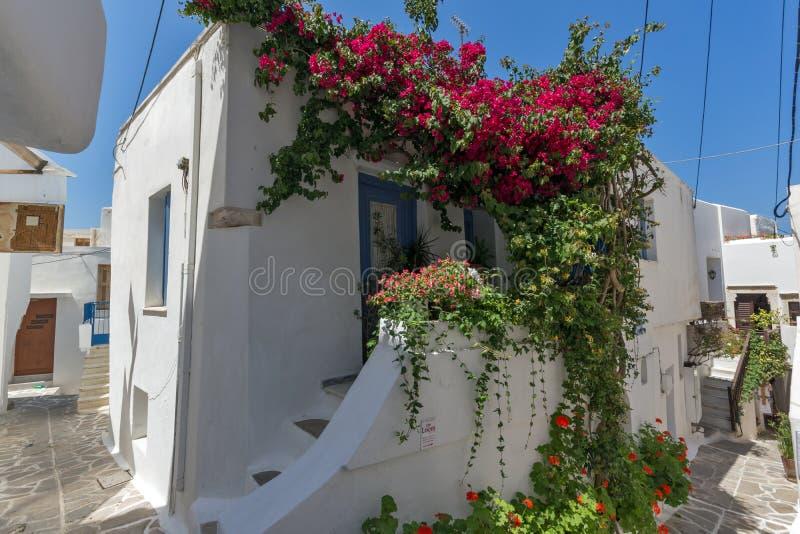 Maison blanche couverte de fleurs rouges, ville de Chora, île de Naxos, Grèce image stock