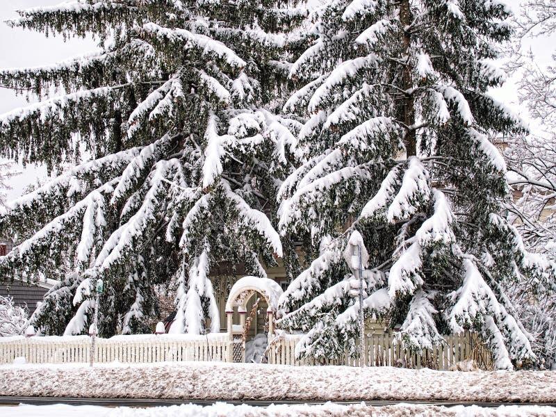 Maison cachée par la neige images libres de droits