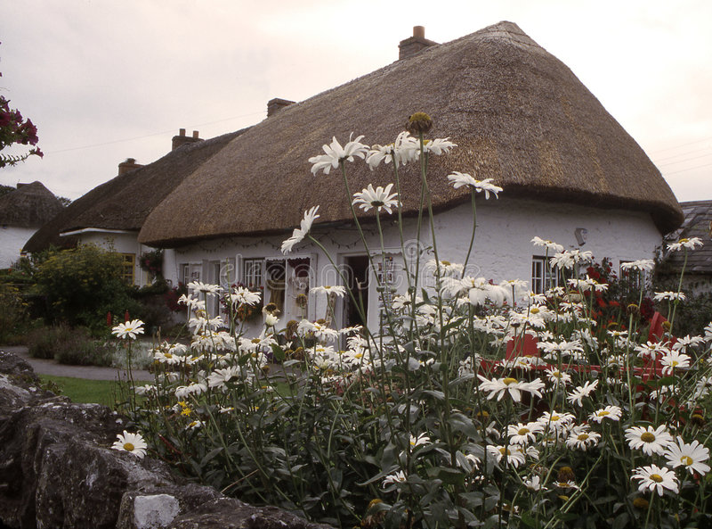 Maison couverte de chaume, adare Irlande image libre de droits