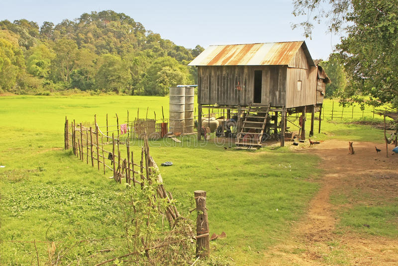 Maison d'échasse près de gisement de riz, Cambodge photo stock