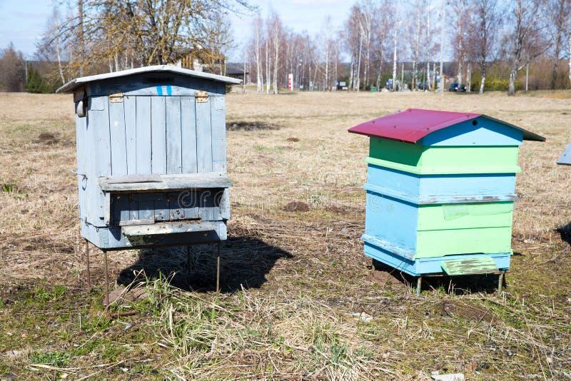 Maison d'abeilles dans le pr? Ressort et jour ensoleill? Photo 2019 de voyage photos libres de droits