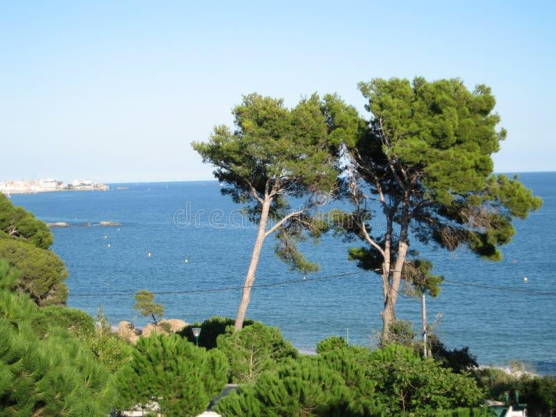 Maison d'avion de sable de vague d'été de nature de mer d'échelle de canards de voile de voilier image libre de droits