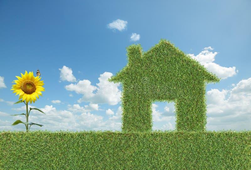 Maison d'herbe verte photographie stock libre de droits