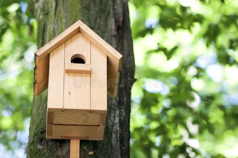 Maison d'oiseau ou pondoir jaune en bois sur un arbre en parc d'été photos stock