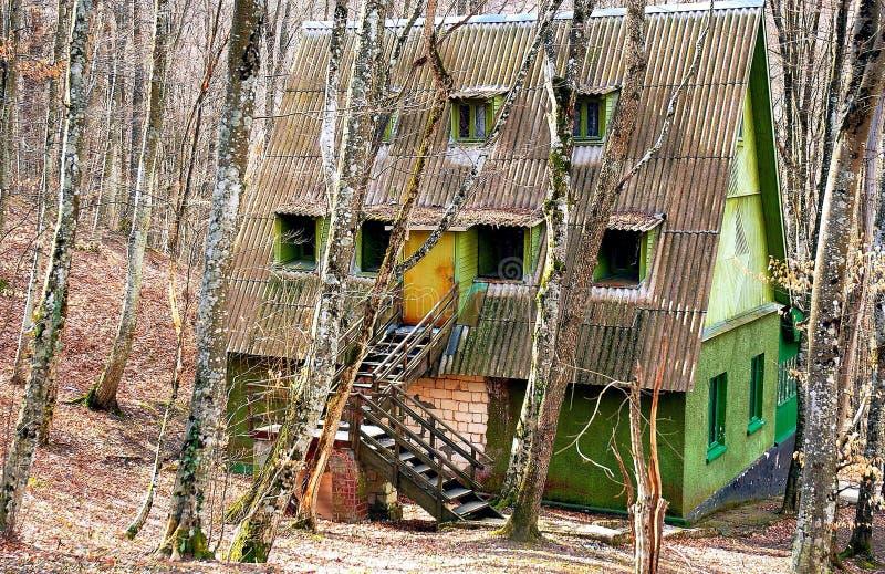 Maison dans la forêt image stock