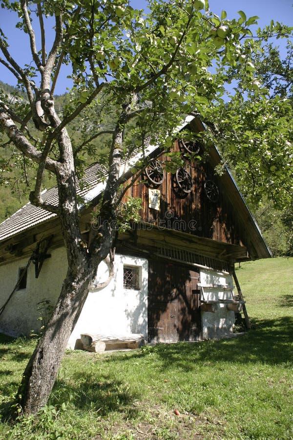 Maison dans la nature photo libre de droits