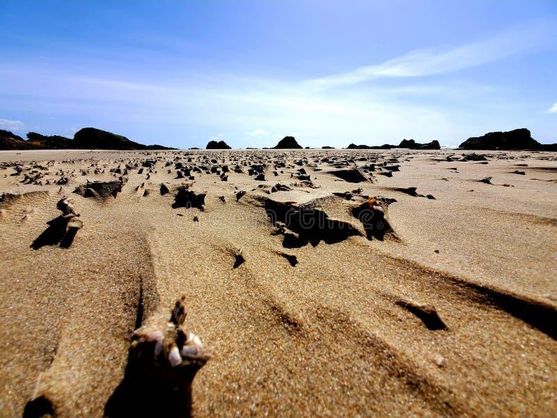 Maison de côte de l'Orégon du sable enflé de vent photographie stock libre de droits