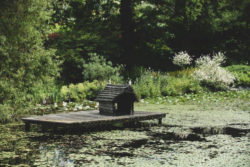 Maison de canard sur un étang en parc photo libre de droits