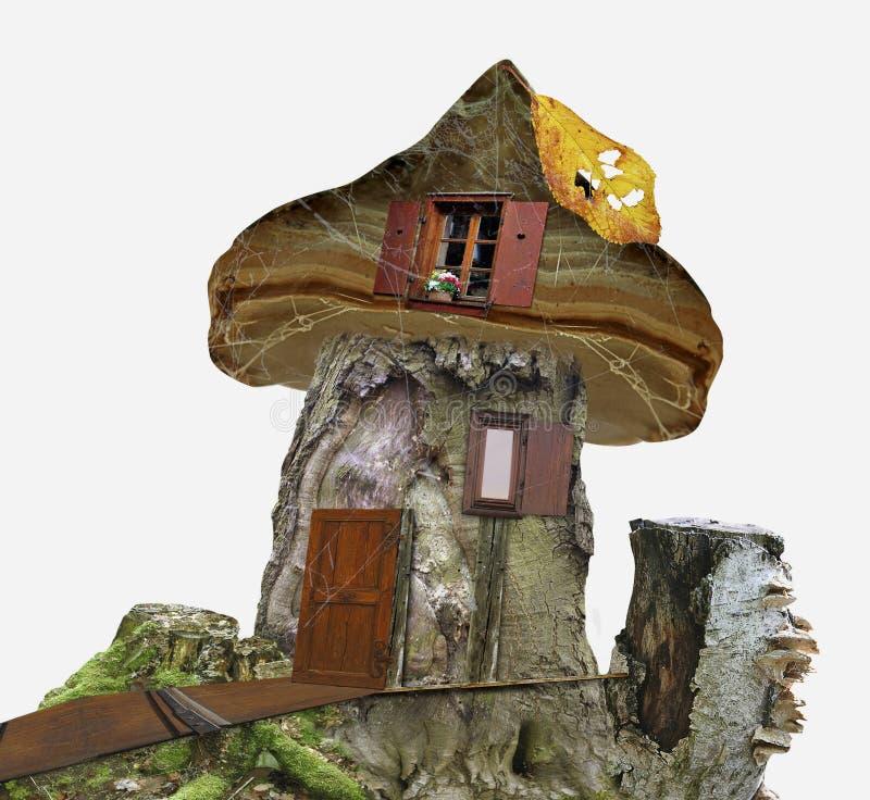 Maison de conte de fées de tronçon avec les fenêtres, la toile d'araignée et la feuille illustration de vecteur