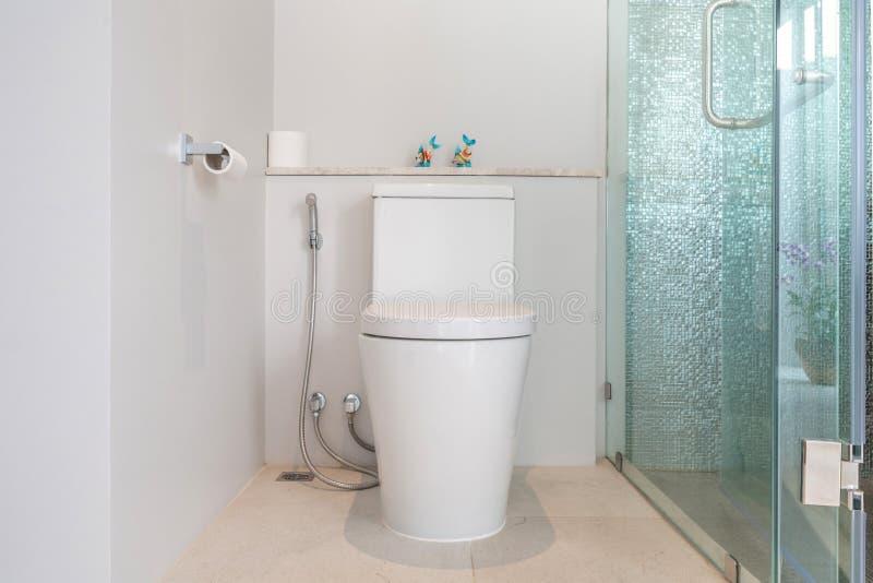 Maison de luxe de cuvette des toilettes de caract?ristique de salle de bains, maison, b?timent images stock