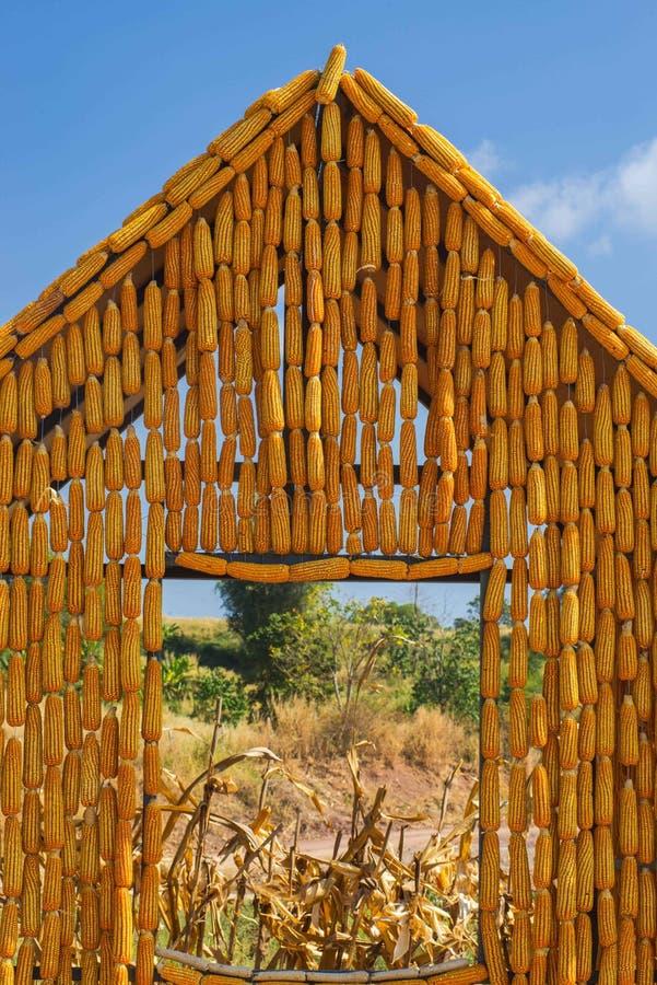 Maison de maïs photos libres de droits