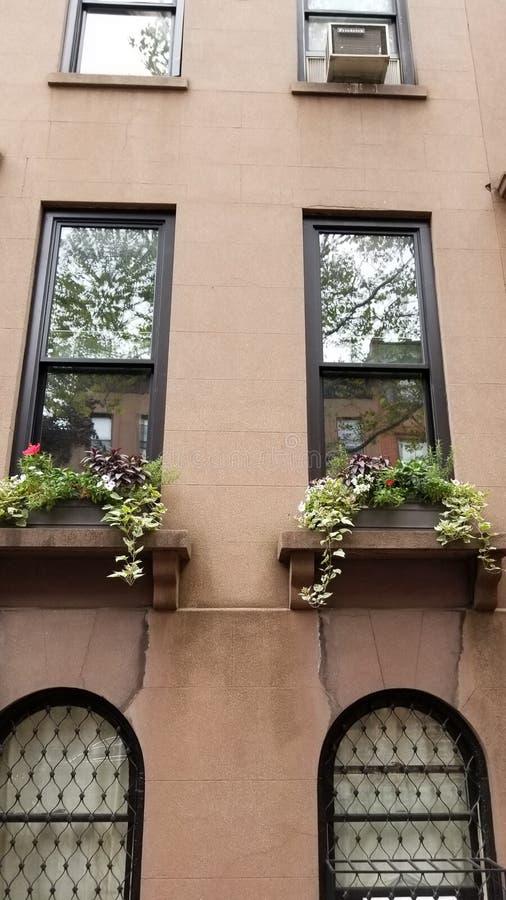 Maison de maison de grès en Carroll Gardens Brooklyn image stock