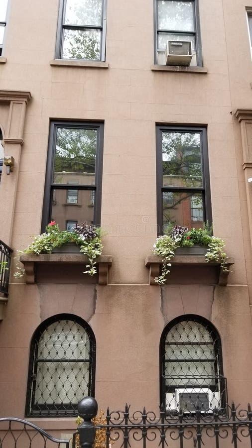 Maison de maison de grès en Carroll Gardens Brooklyn photos stock