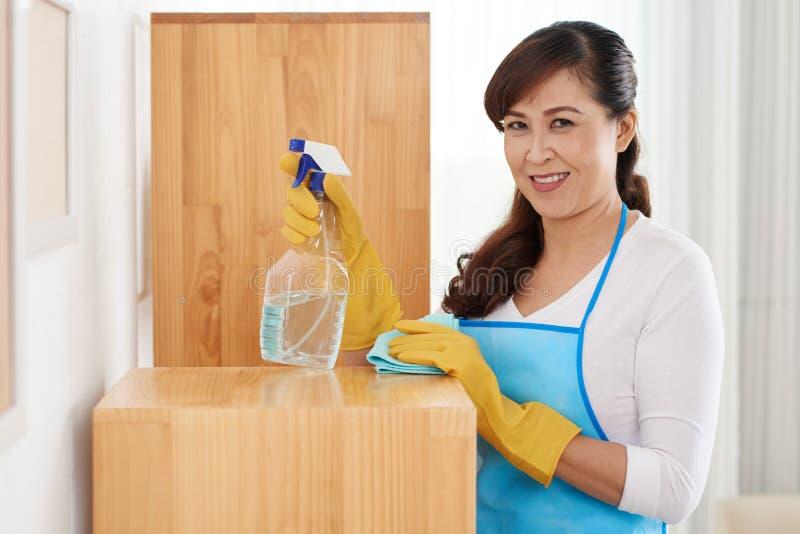 Maison de nettoyage photos stock
