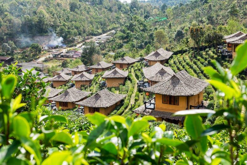 Maison de terre de station de vacances de point de vue dans la plantation de thé à l'interdiction r de vin de lie photos stock
