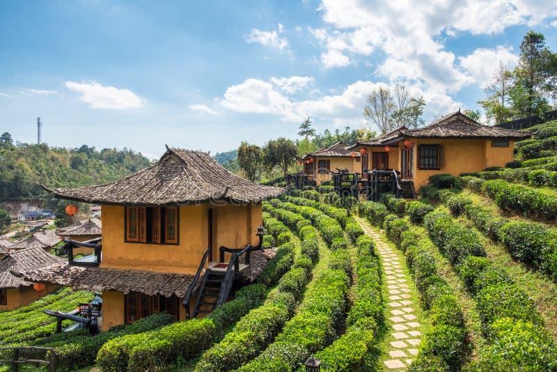 Maison de terre de station de vacances de point de vue dans la plantation de thé à l'interdiction r de vin de lie photos libres de droits