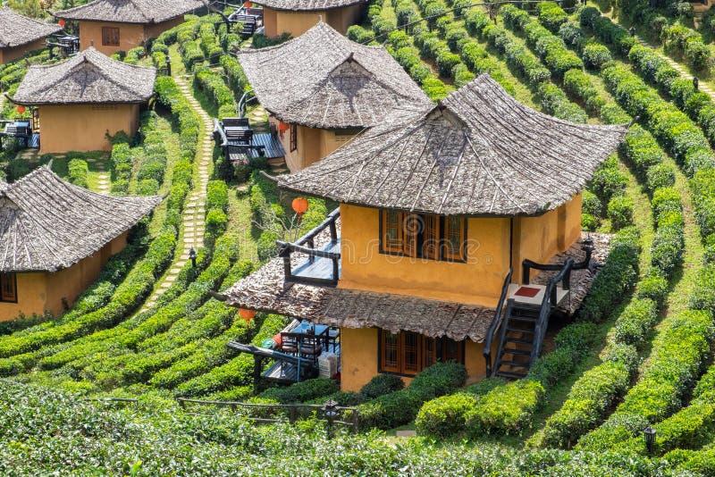 Maison de terre de station de vacances de point de vue dans la plantation de thé à l'interdiction r de vin de lie photo stock