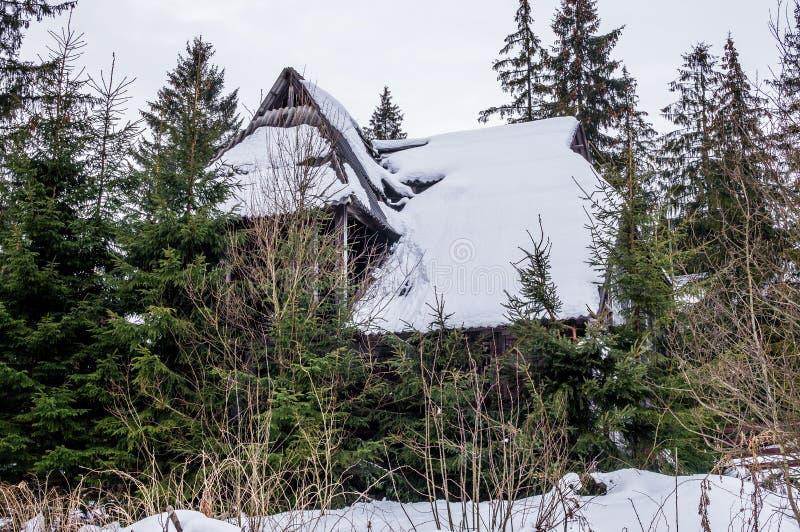 Maison en bois abandonnée mystérieuse dans la forêt photographie stock