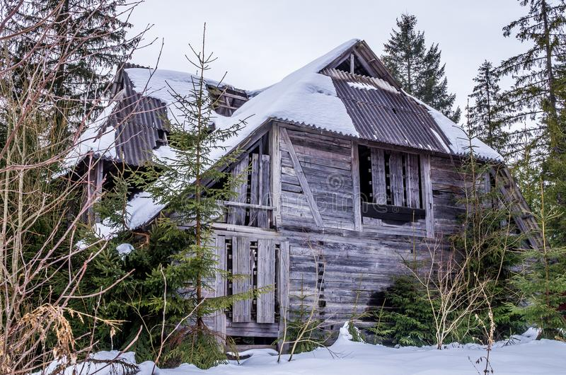 Maison en bois abandonnée mystérieuse dans une forêt impeccable photo libre de droits