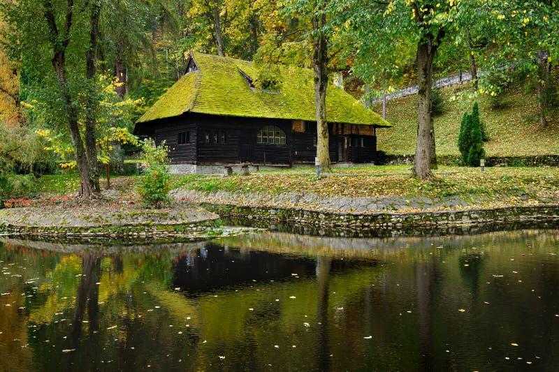 maison en bois avec de la mousse sur le toit image stock image du for t noir 46066527. Black Bedroom Furniture Sets. Home Design Ideas