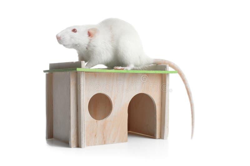 Maison en bois pour le rat image stock