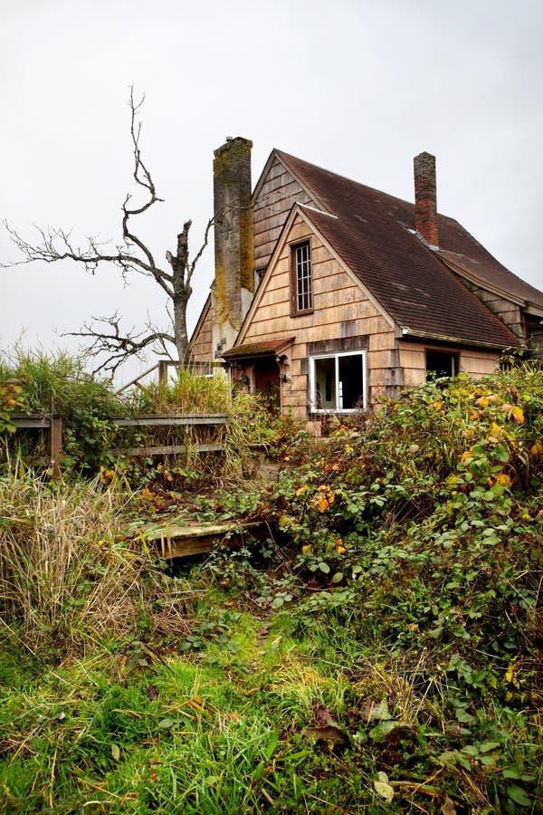 Maison envahie abandonnée photo libre de droits