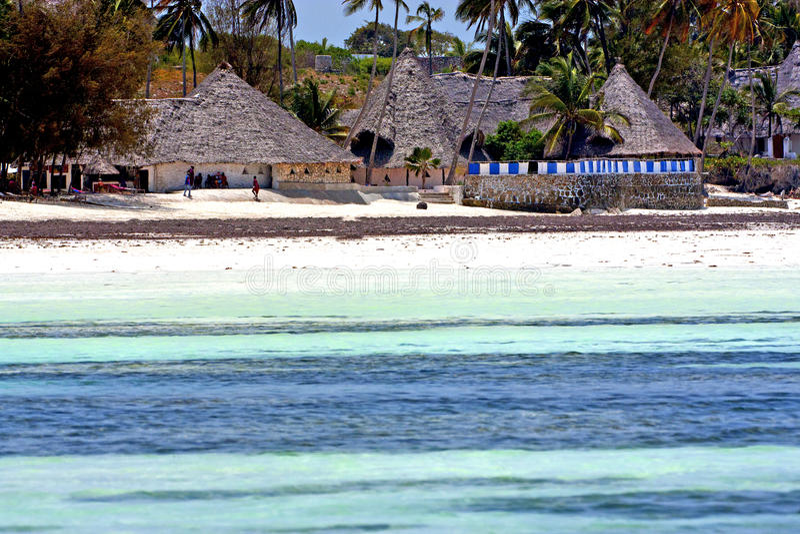 maison et navigation de Zanzibar de plage d'algue photographie stock libre de droits