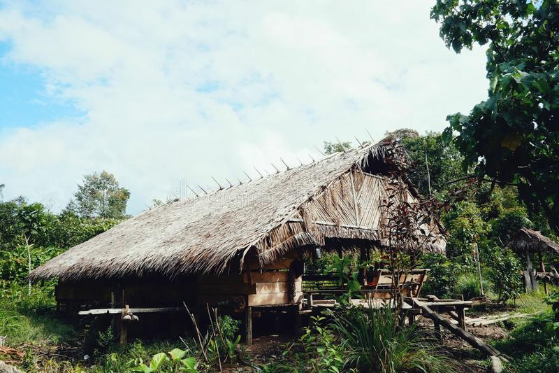 Maison tribale de jungle d'île de Mentawai photos libres de droits