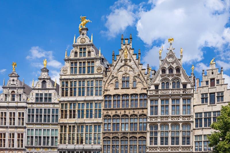 Maisons de guilde d'Anvers images libres de droits