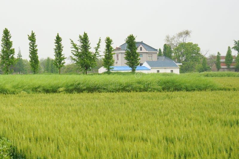 Maisons de village et terre chinoises de ferme photos stock