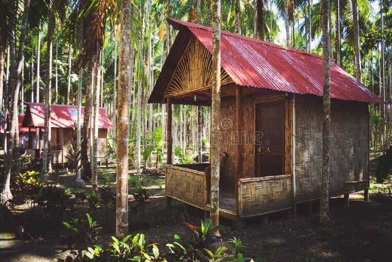Maisons en bambou dans une palmeraie photographie stock