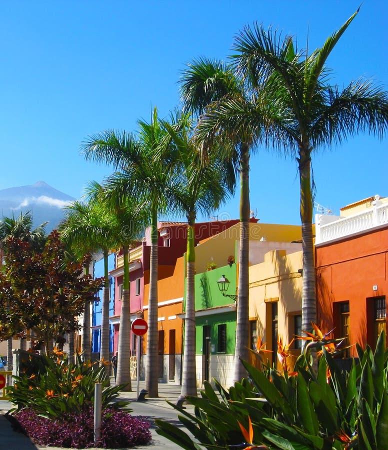 Maisons et palmiers colorés sur la rue dans la ville de Puerto de la Cruz, Ténérife, Îles Canaries, Espagne image libre de droits
