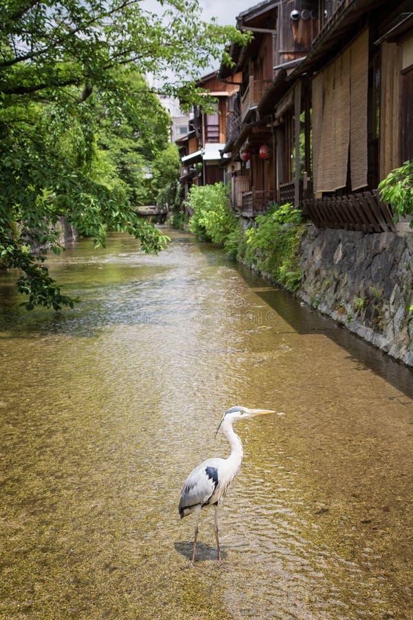 Maisons traditionnelles dans Gion photographie stock libre de droits