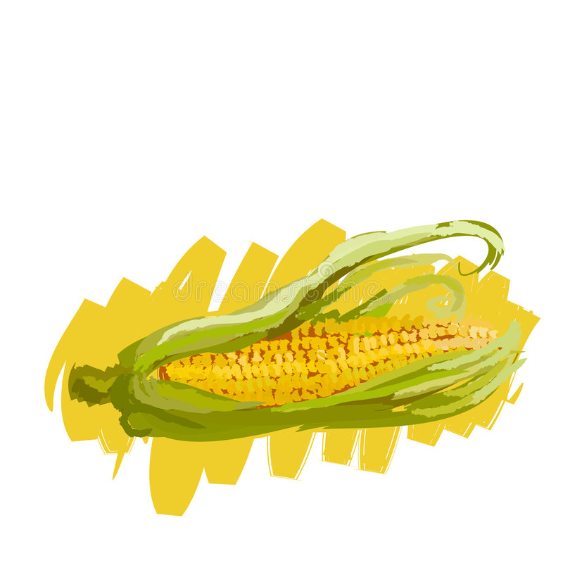Maize royalty free illustration