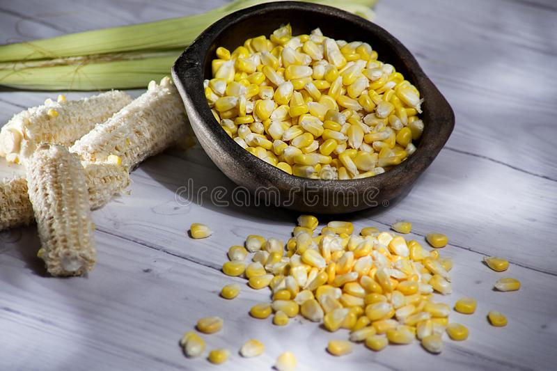 Maize-cob and yellow corn grains in clay pot on white wooden background- zea mays stock photography