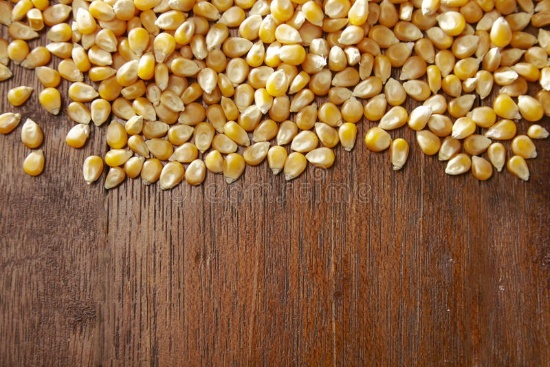 Maize corn. On the wooden table royalty free stock photos