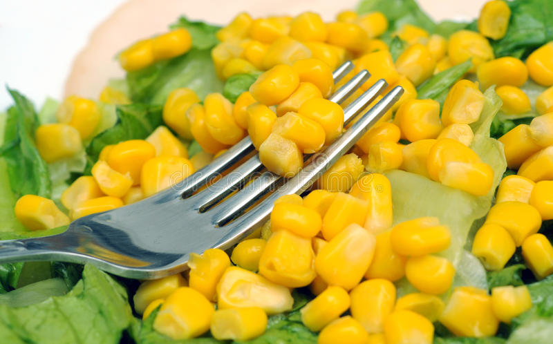 Download Maize salad stock photo. Image of dinner, appetizer, metal - 36744424