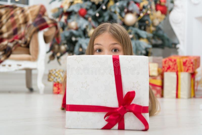 Maj fylls din jul med glat oväsen xmas-online-shopping Isolerat på vit bakgrund Julgran och presents Lyckligt arkivbilder